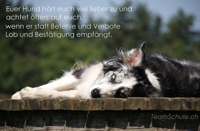 lob_befehle