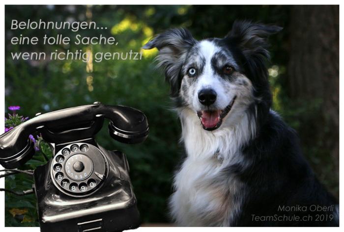 0_Telefon01.jpg