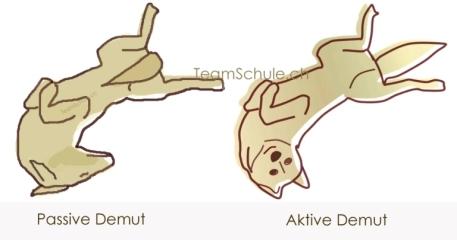 aktive_passive_Demut