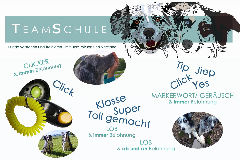 marker_lob_teamschule